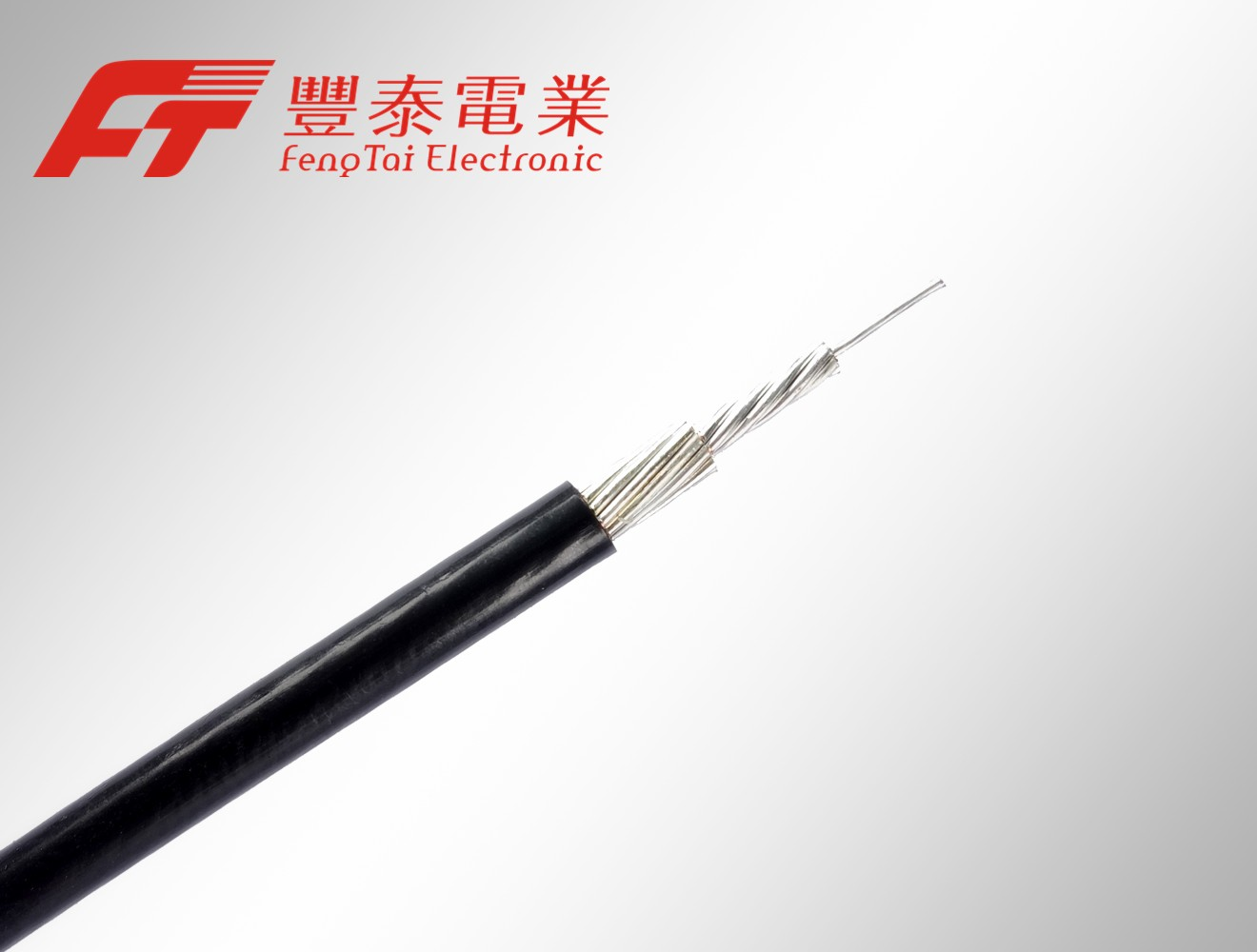 Products | Feng Tai Electronic International Co., Ltd